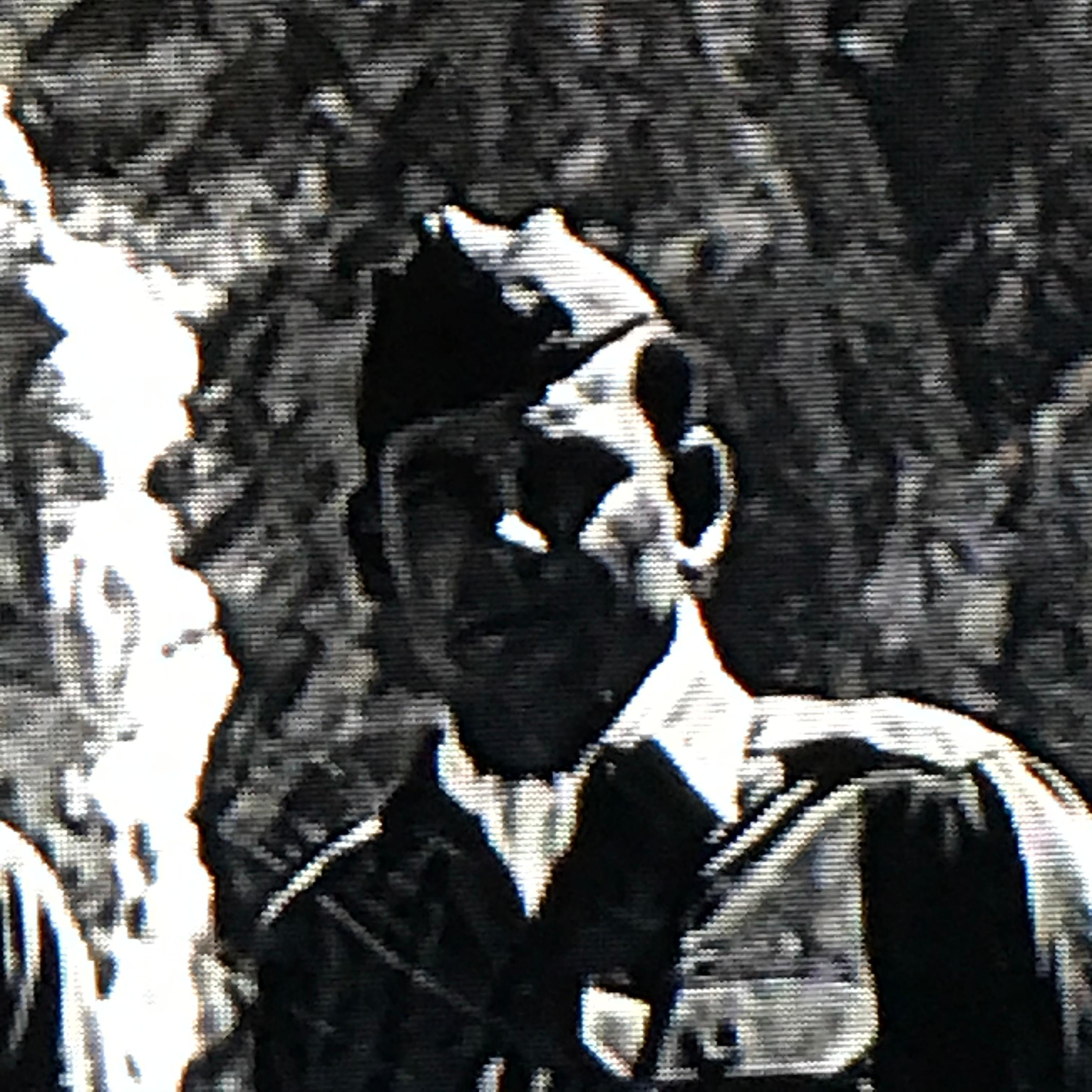 Looking to identify this 7th Army soldier