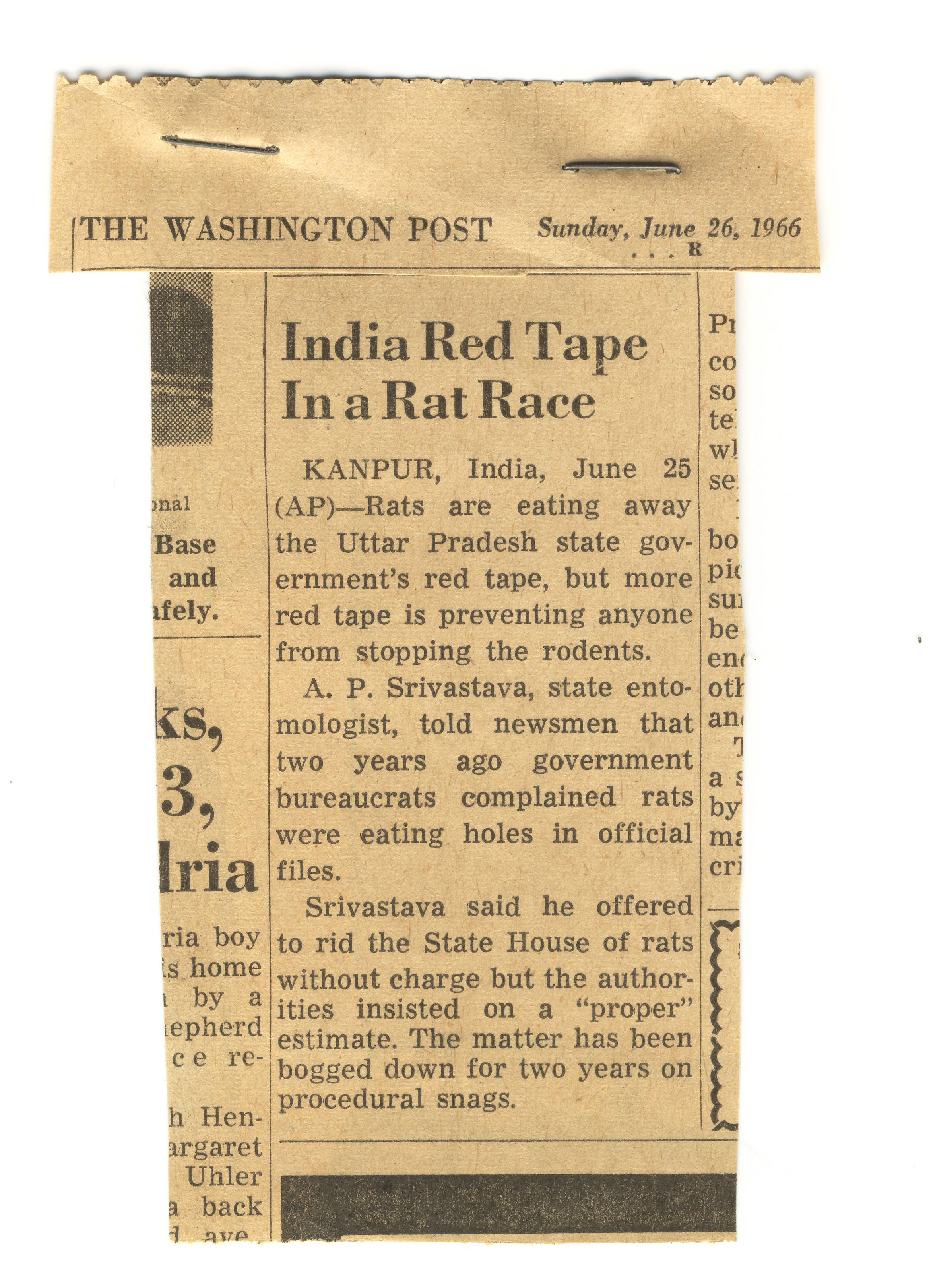 Red Tape Prevents Indian Govt. Action on Rats Eating Records - Collection MUNDN, file Misc. Letters and Writings, box 3.jpg